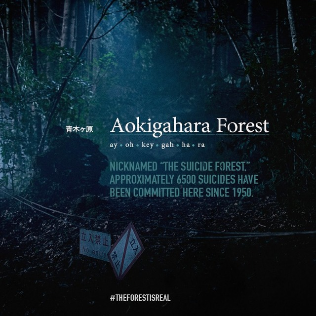 AOKIGAHARA FOREST TEXT